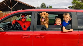 Spiderman Drives Kids and PUPPY to Park Playground!!
