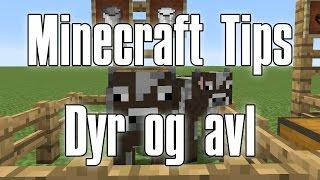 Minecraft Tips - Dyr og avl (Dansk)