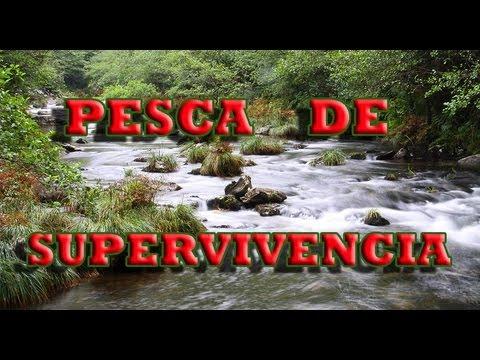 Costa rica survival como atrapar funnycat tv for Como hacer un criadero de mojarras