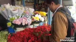 Cara merangkai bunga mawar