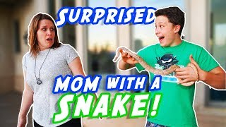 Surprised my MOM with a SNAKE!