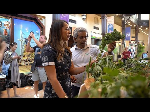 Dubai, çölün ortasında sürdürülebilir organik tarım ile yeni bir kalkınma hamlesi başlattı…