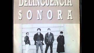 Delincuencia Sonora. Vagabundo.wmv