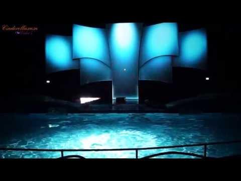 Aquabella de nieuwe Dolfijnenshow van het Dolfinarium in Harderwijk 9 Mei 2013