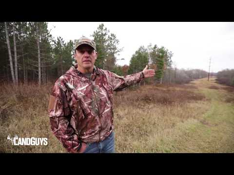 Diverse Northern Wisconsin Hunting Land For Sale!