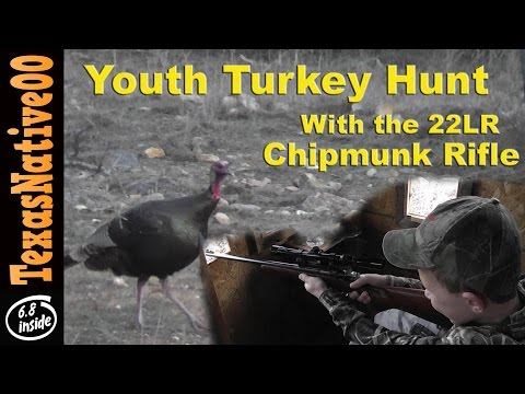 6 Year Old Hunting Turkey With The 22LR Chipmunk Rifle