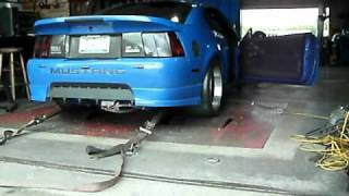 cammed procharged mustang mach 1 dyno