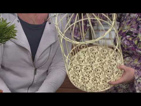 Barbara King 2-in-1 Vintage Style Birdcage and Accent Table on QVC