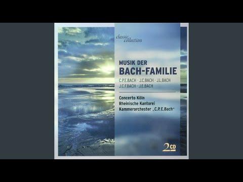 Trio Sonata for Flute, Violin and Continuo No. 4 in B-Flat Major, Fk. 50: II. Allegro