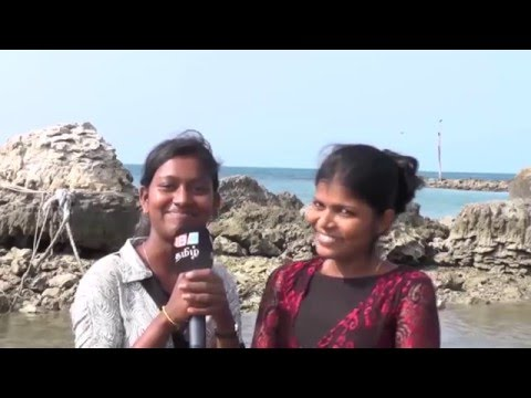Chundikuli Jaffna | Vanakam thainadu | Ep 224 part 1 | IBC Tamil TV