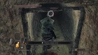 Zagrajmy w Dark Souls 2: Scholar of the First Sin (part 20)