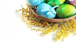 Как выбрать краску для яиц