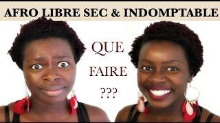 AFRO LIBRE SEC & INDOMPTABLE ⎢ MISE EN FORME AU LEVER ⎢ CHEVEUX 4C | PERSEV'HAIR