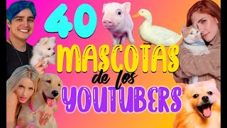 40 MASCOTAS DE YOUTUBERS ¿A cuántas de ellas conoces? - 52 Rankings