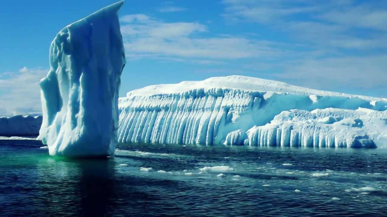 Wilde Arktis Trailer Deutsch Dvd Blu Ray Youtube
