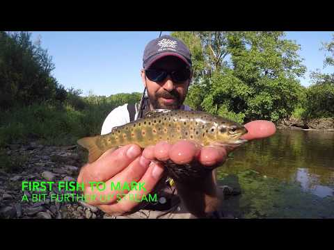 Fly Fishing A Devon River May 2020