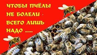 🔴ЧТОБЫ ПЧЁЛЫ НЕ БОЛЕЛИ - ВСЕГО ЛИШЬ НАДО ... | So that the bees do not get sick - just need to ...