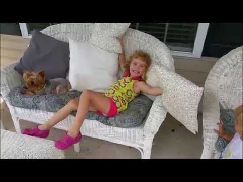 American Signature Furniture Chaise Commercial Remake