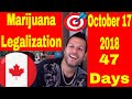 Marijuana Legalization 47 Days away from HISTORY in Canada