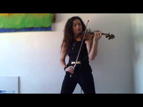 Je t'aime Lara Fabian cover violin Daniela