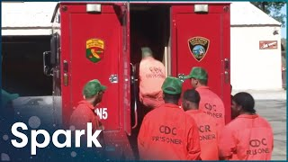 Why Are Wildfires Becoming More Unpredictable | Stormrider: Fire Storm | Spark