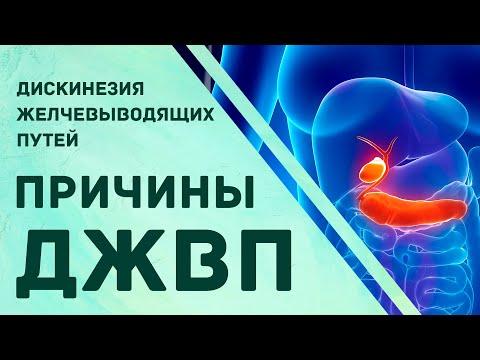 Дискинезия желчевыводящих путей. Причины и рекомендации. Гульнара Мазитова