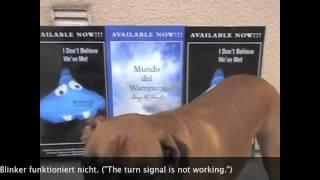 Teach Your Dog To Speak German
