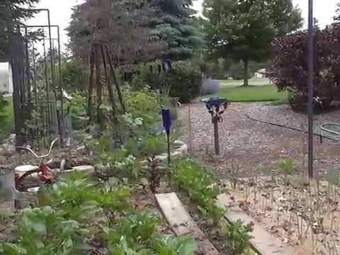 ORGANIC RAISED VEGGIE & HERB BEDS - LASAGNA GARDENING METHOD