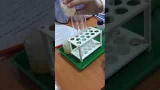 Лабораторная работа по химии