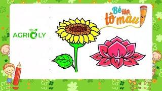 Agrioly | Bé Tập Vẽ Và Tô Màu Hoa Hướng Dương Và Hoa Sen