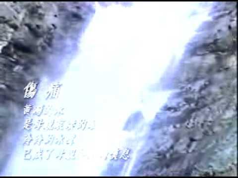 Improving the Xindian River(新店溪的整治)