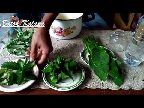 cara-mengobati-asam-urat-dengan-herbal-100%-ampuh