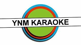 Arwana - Lamunanku Karaoke
