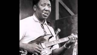 Muddy Waters - After Hours