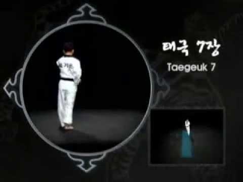 Taeguk 7º (Chill) Jang
