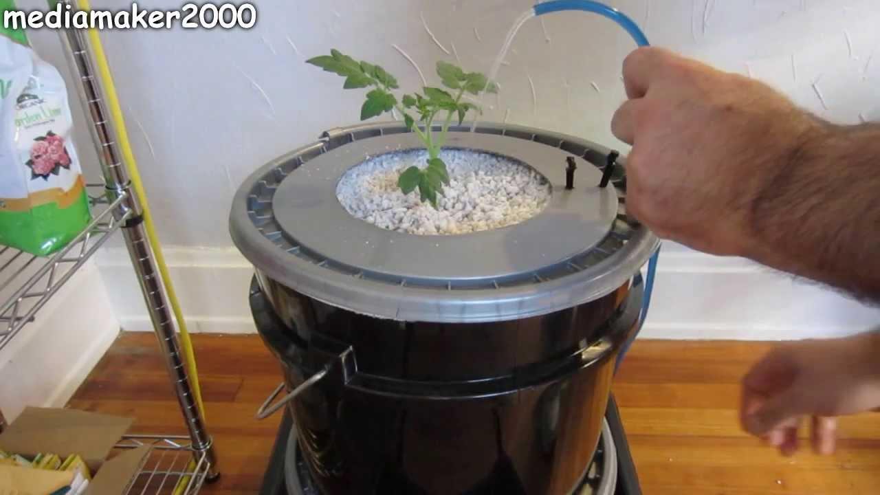 Single Dutch Bucket Hydroponic System Easy Diy Patio