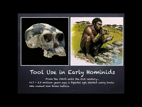 Physical Anthropology Introduction