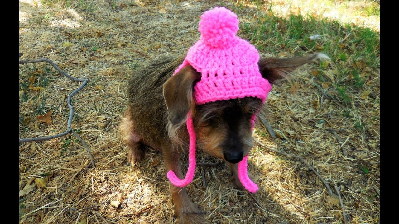 How To Crochet A Dog Cat Hat Tutorial SizeXS SMALL