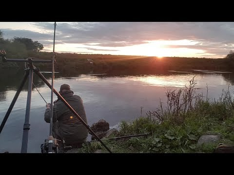 River trent barbel fishing