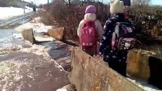 В Аткарском районе затопило мост на Медведице