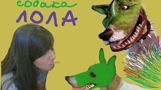 #1.День Рождения у Софии.Смешная Собака Лола Из Фильма