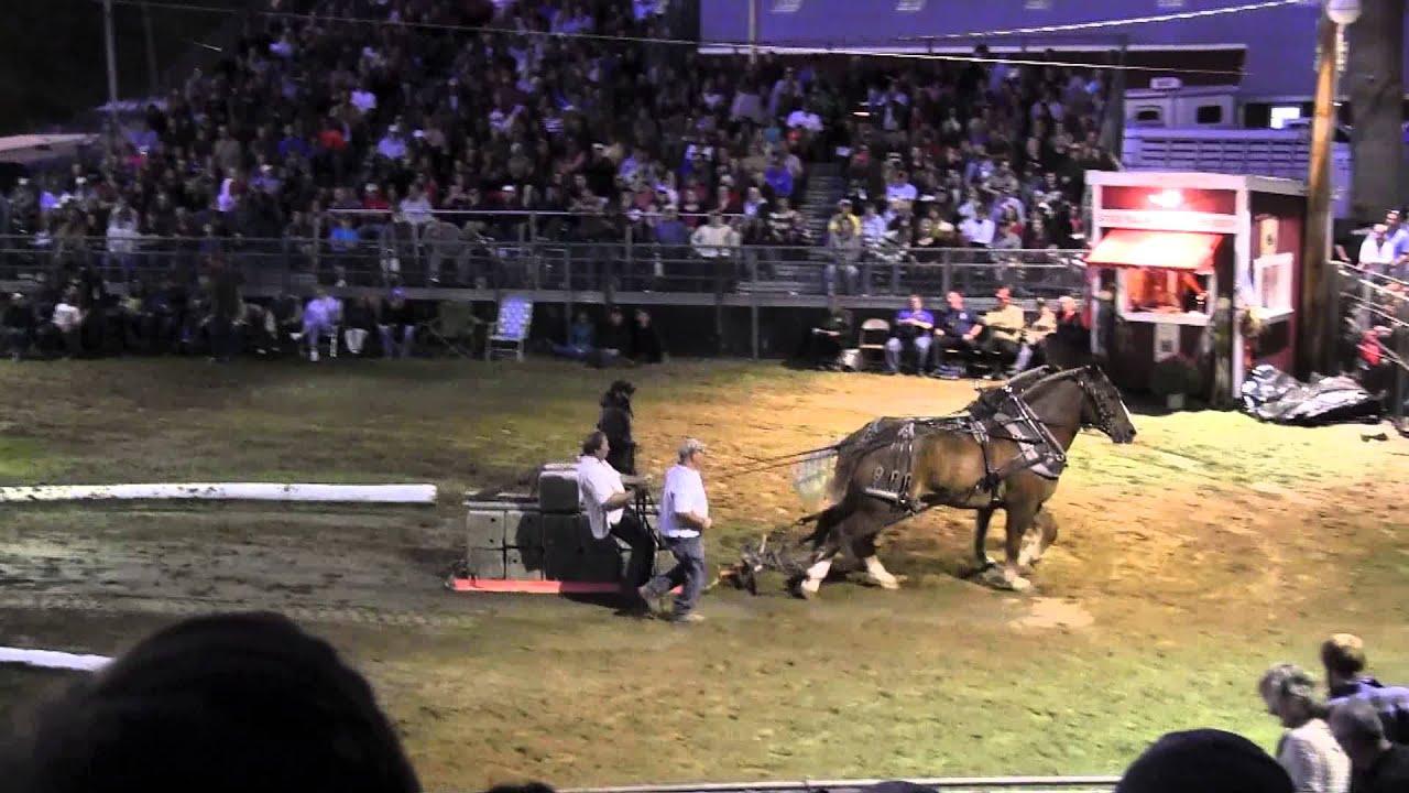 Download Draft Horse Pull 2013 Deerfield Fair NH Pulling Video 30