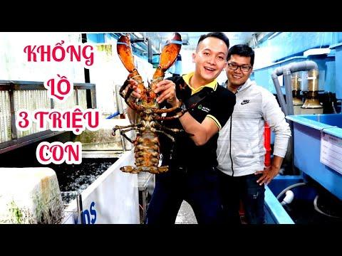 Khám phá vựa hải sản 'Cao Cấp' tươi sống lớn nhất Sài Gòn