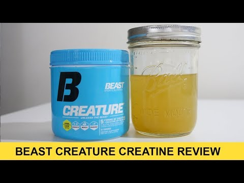 f73536f1 Beast Creature Creatine Review — Why 5 Kinds of Creatine? - BarBend
