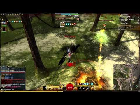 Guild Wars 2 - Swampland Fractal Guide - Warrior   FunnyCat TV