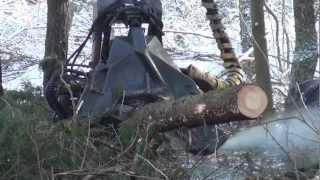 Harwester ścina drzewa na trasie PKM - 07.02.2013 r.
