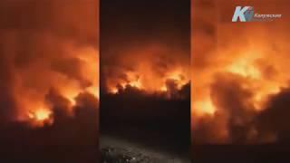 Пожар на книжном развале