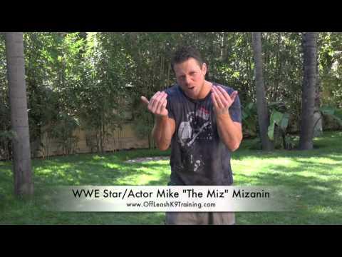 WWE StarActor Mike