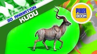 Green Screen Kudu African Antelope Animals - PixelBoom 3D Animations