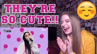 REACTING TO MAMAMOO - WAGGY [COMEBACK STAGE]